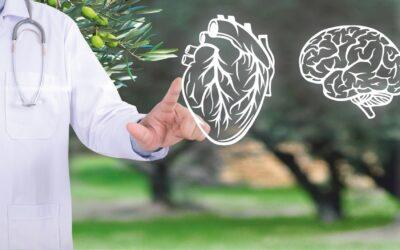 Colesterolo HDL e LDL: un approfondimento